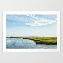 Assateague Island Art Print