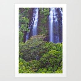 Opaekea'a Falls - Kauai  Art Print