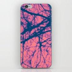 1257 iPhone & iPod Skin