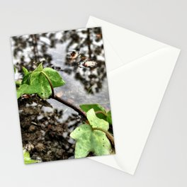 Water, leaves, and the reflection of trees. Stationery Cards