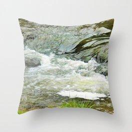 Stream, Hunua Falls, NZ Throw Pillow