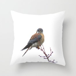 Perched sparrowhawk 8 Throw Pillow