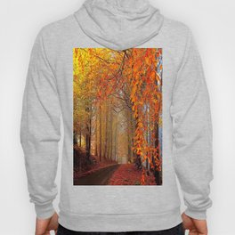 Autumn Parade Hoody