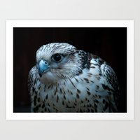 falcon Art Prints featuring falcon by Jo Beerens