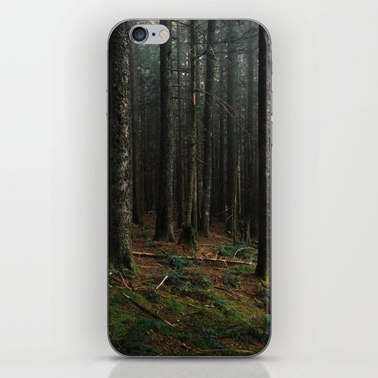 Gorge Woods iPhone & iPod Skin