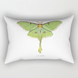 Luna Moth (Actias luna) II Rectangular Pillow