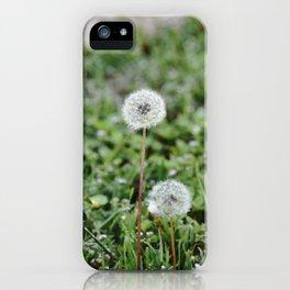 Make A Wish 4 iPhone Case