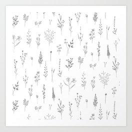 Wildflowers - Grey Flowers Art Print