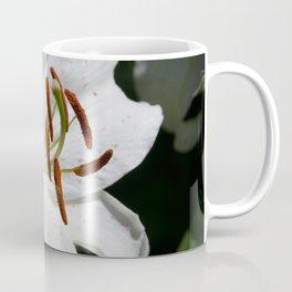 White Lily by Teresa Thompson Coffee Mug