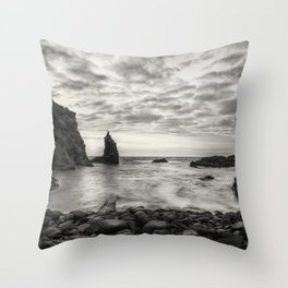 Port Coon Throw Pillow