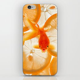 Orange Fish iPhone Skin
