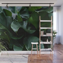 Flower Photography by Nicolas Solerieu Wall Mural
