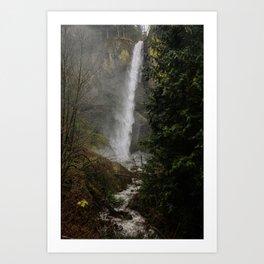 Latourell Falls, Oregon Art Print