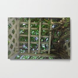 Into the garden Metal Print