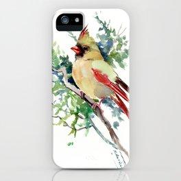 Cardinal Bird Artwork, female cardinal bird iPhone Case