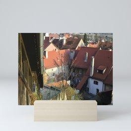Ptuj Mini Art Print