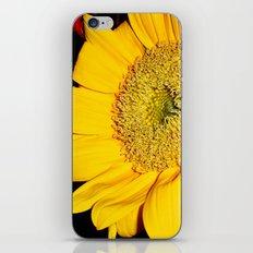 Sunflower #2 iPhone & iPod Skin