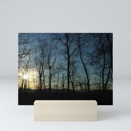 Sunset Through the Trees Mini Art Print