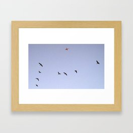 Leading the Way Framed Art Print