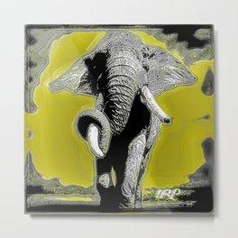 Elephant Models: Boss African Elephant 01-02 Metal Print