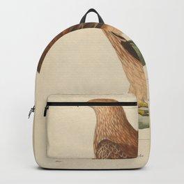 Golden Eagle 23 Backpack