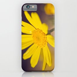 Bright Yellow Daisy - floral photography iPhone Case