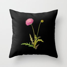 Centaurea Moschata  Mary Delany Delicate Paper Flower Collage Black Background Floral Botanical Throw Pillow