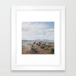 Running Horses Framed Art Print