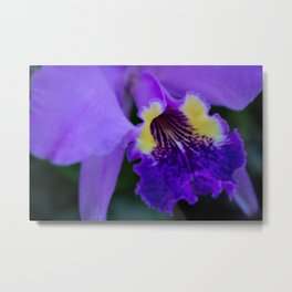Orquidea Violeta Metal Print