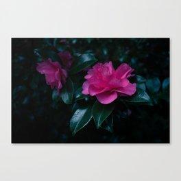 Dark flowers II Canvas Print