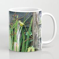 plants Mugs featuring Plants by Martha Bräuer
