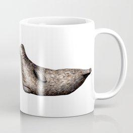 Grey seals(Halichoerus grypus) Coffee Mug