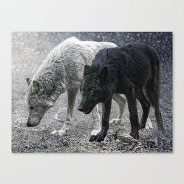 ivory and ebony Canvas Print