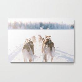 Frozen Wonderland Metal Print