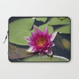 Longwood Gardens - Spring Series 305 Laptop Sleeve