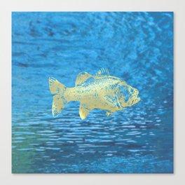 glitterfish OMM Canvas Print