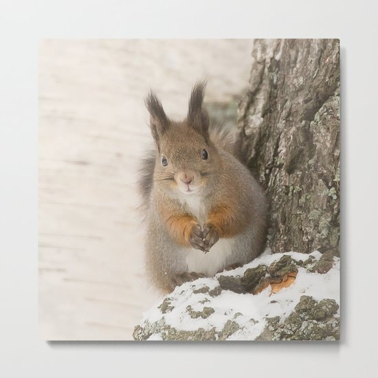Hi there - what's up? Metal Print