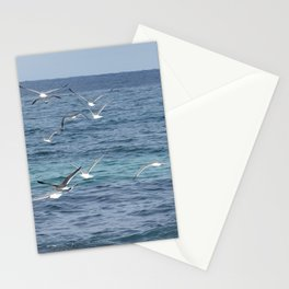 View of migratory birds flying on the jeju island sea in Korea. Stationery Cards