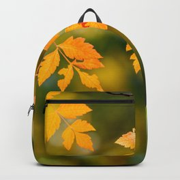 Yellow And Orange Autumn Tree Leaves In Fall Season, Autumn Season, Fall Background, Falling Leaves Backpack