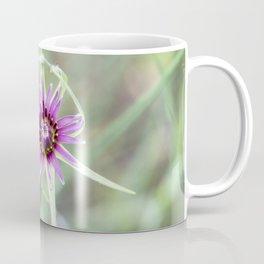 Tragopogon porrifolius L.  Coffee Mug