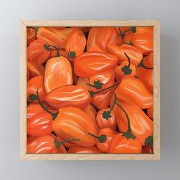 Habanero Peppers Framed Mini Art Print