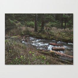 River driftwood  Canvas Print
