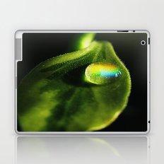 Like A Rainbow Laptop & iPad Skin