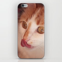 So delicious - Lovely Cat iPhone Skin