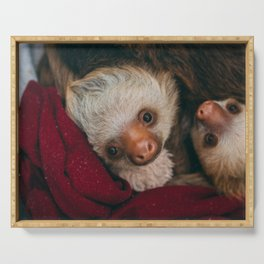 Baby Sloth Cute Serving Tray