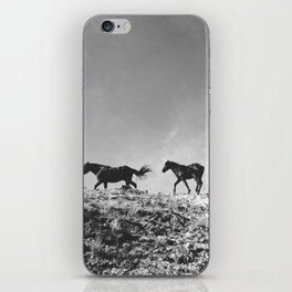 Pryor Mountain Wild Mustangs iPhone Skin