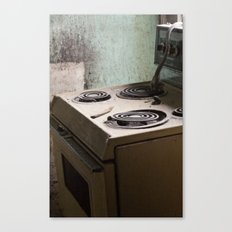 river stove Canvas Print
