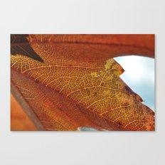 Fall's Veins. Canvas Print