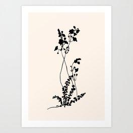 Lovely branch II Art Print