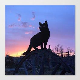 Black Cat Sunset Canvas Print